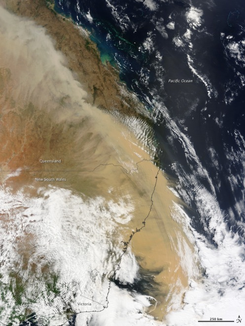 The above image is from NASA's Moderate Resolution Imaging Spectroradiometer (MODIS) on the Terra satellite. In the image, you can see the dust rising and heading east in plumes.