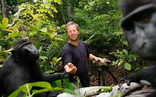 Slater, from Coleford, Gloucestershire, was taking photos of macaques on the Indonesian island of Sulawesi in 2011 when the animals began to investigate his equipment